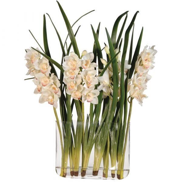 Cream Orchid Cymbidium & Leaves Arrangement In Glass