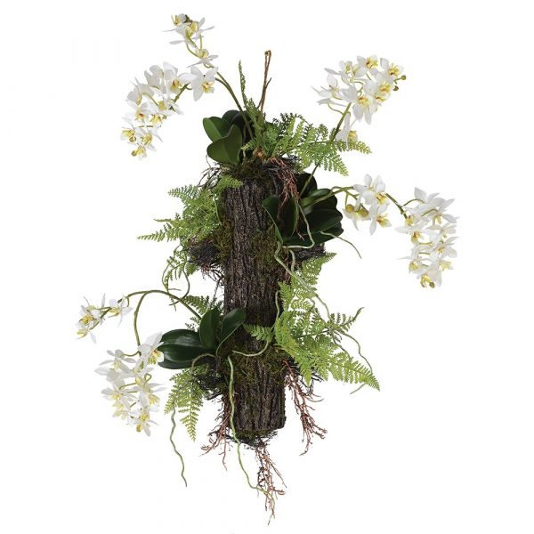 White Orchids And Ferns Growing Naturally Hanging Arrangement
