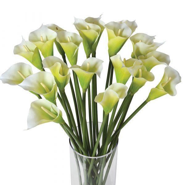Bright White Calla Lilies In Glass Column Vase