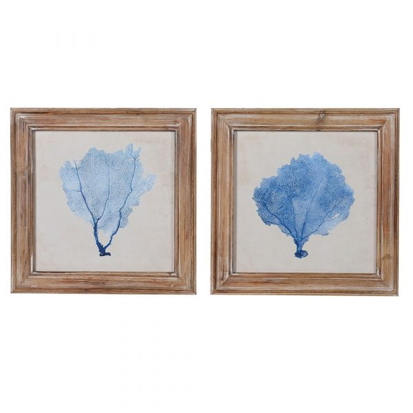 Set of 2 Blue Coral Pictures