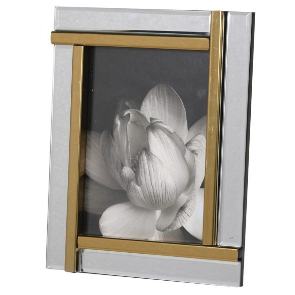 Gold Panel Mirror Frame