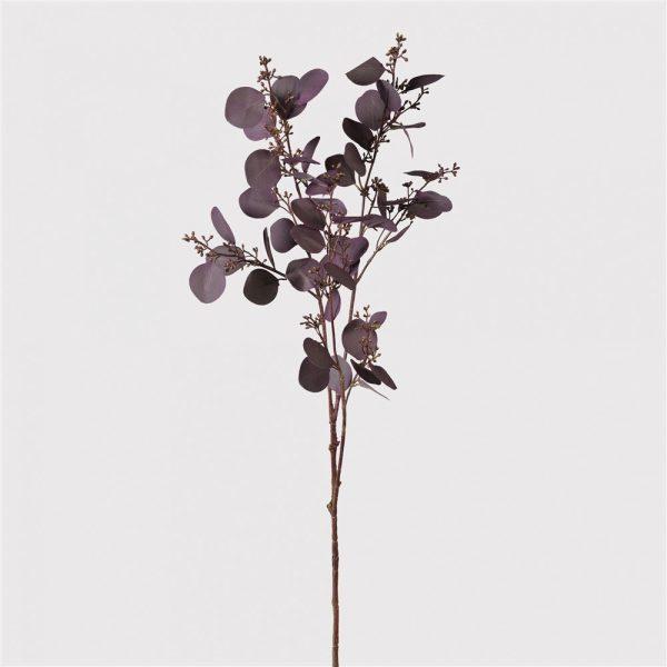 Large Deep Aubergine Eucalyptus Spray With Seeds