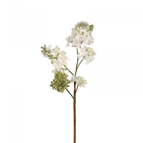 White Lilac Spray